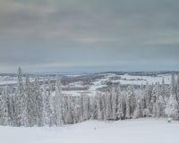 Winter in jämtland. The white surroundings of Östersund in the middel of Jämtland in Sweden Stock Photos