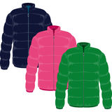 Winter jacket Royalty Free Stock Images