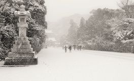 Winter in Japan Royalty Free Stock Images