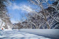 Winter in Japan. Stock Image