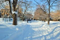Winter in Japan. Winter scene in Sapporo, Hokkaido, Japan Stock Photo