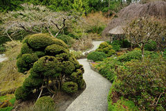 Winter japanese garden Royalty Free Stock Photo