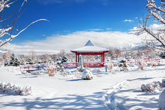 Winter Japanese garden in Almaty Royalty Free Stock Photos