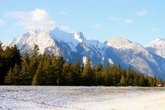 Winter in jasper, canada. Jasper national park, alberta, canada, sunny weather, first snow Royalty Free Stock Image