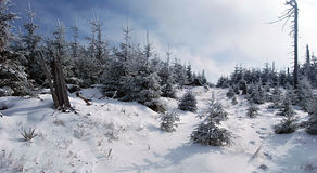 Winter in Jeseniky mountains near Medvedi vrch hill Stock Photo
