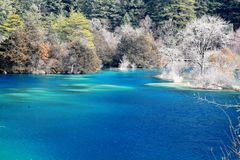 Winter Jiuzhaigou Shuzheng Lakes Royalty Free Stock Photo