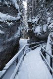 Winter in Johnston Canyon in Banff National Park, Alberta royalty free stock photos