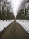 Winter Journey. A Road Between A Snowy Forest Royalty Free Stock Photography