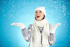 Winter joy Royalty Free Stock Images