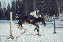 Winter jump horse ride jumping Stock Photography