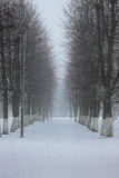 Winter. In Kaliningrad and some snow on the ground Royalty Free Stock Images