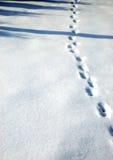 Winter kam lizenzfreie stockfotografie
