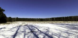 Winter in Kampinos National Park - Poland Stock Image