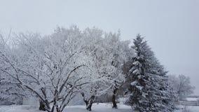Winter in Kanada Stockbild