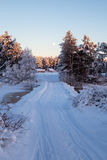 Winter in Karjala Royalty Free Stock Images
