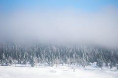 Winter in Karkonosze. Winter in Karkonosze, Czech Republic Royalty Free Stock Photo