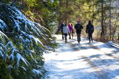 Winter in Karpaten Stockfotos