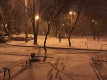 Winter Kharkov. Winter in Kharkov Royalty Free Stock Photo