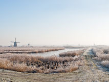 Winters landscape in Kinderdijk Royalty Free Stock Photography