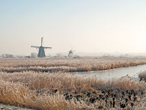 Windmills in a wintry landscape Stock Image