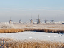 Windmills in a wintry landscape Royalty Free Stock Photos
