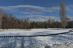 Winter kleiner See im schönen Südpark Stockbilder