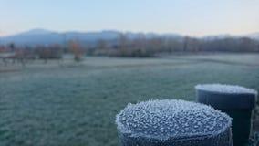 Winter kommt Frost-Wiese Stockbild