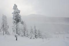 Winter in Krkonose. Czech mountains near Maly Sisak hill Stock Photo