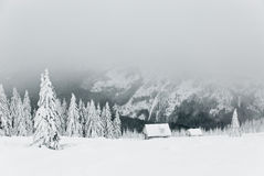 Winter in Krkonose 3. Winter in Krkonose Czech mountains near Maly Sisak hill Royalty Free Stock Images