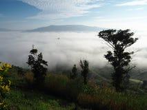 Winter lässt Nebel Stockbilder