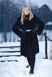 Winter Lady Royalty Free Stock Photos