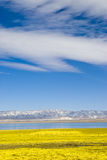Winter lake. This is the Qinghai Lake, one of the most famous Chinese lakes Royalty Free Stock Photo