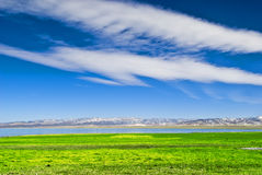 Winter lake. This is the Qinghai Lake, one of the most famous Chinese lakes Stock Images