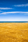 Winter lake. This is the Qinghai Lake, one of the most famous Chinese lakes Royalty Free Stock Image