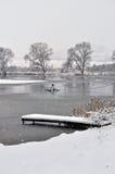 Winter lake Royalty Free Stock Photography