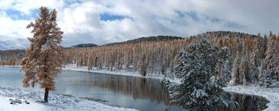 Winter lake Royalty Free Stock Photo