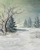 Winter at the lake Royalty Free Stock Photos