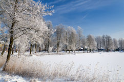 Winter lake Royalty Free Stock Photography