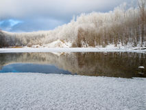Winter Lake And Forest Stock Images
