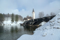 Winter on the lake Bohinj Stock Images