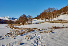 Winter Lake District Scene Stock Photo