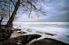 Winter Lake Erie Stock Images