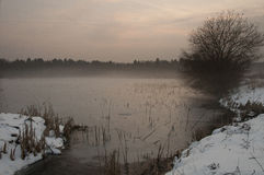 Winter lake in fog at sunset Royalty Free Stock Images