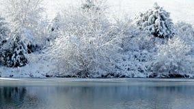 Winter lake stock video