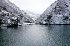 Winter of lake Royalty Free Stock Photo