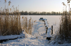 Winter lake Stock Images