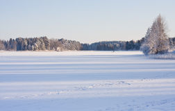 Winter lake landscape Royalty Free Stock Photos