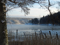 Winter by the lake. Winter landscape by a lake Stock Photo