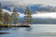 Winter lake landscape Stock Image