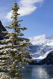 Winter in Lake Louise Royalty Free Stock Photography